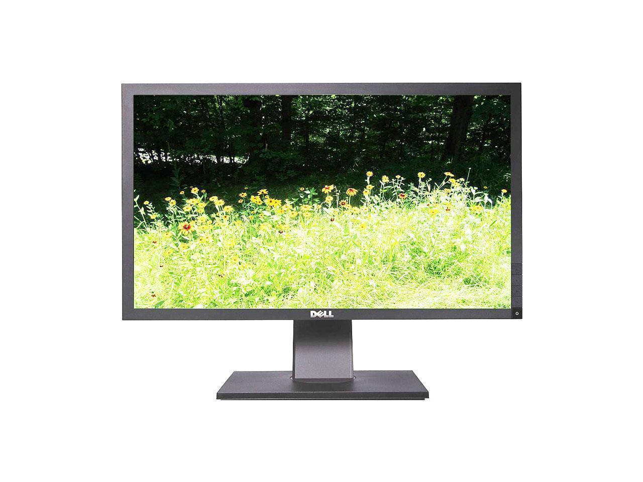 DELL P2411HB 24 Inch Full HD LED